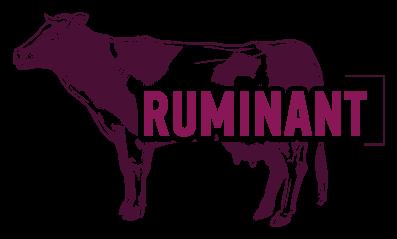 ruminant